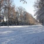 hiver-6